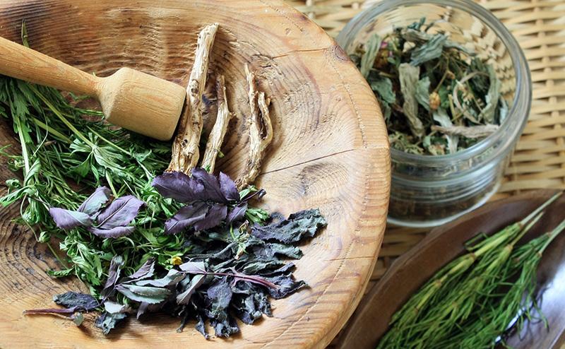 Homöopathie Natürliche Heilung